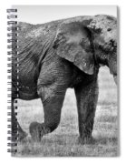 Majestic African Elephant Spiral Notebook