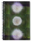 Make A Wish Spiral Notebook