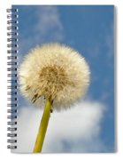 Make Another Wish Spiral Notebook