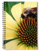 Making Honey Spiral Notebook