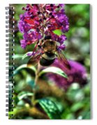 Making Things New Via The Bee Series Spiral Notebook