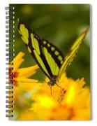 Malachite Butterfly On Flower Spiral Notebook