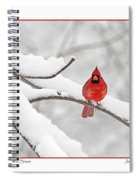 Male Cardinal In Snow Spiral Notebook