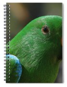 Male Eclectus Parrot Spiral Notebook