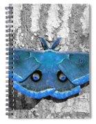 Male Moth Light Blue Spiral Notebook