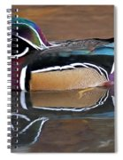 Male Wood Duck Spiral Notebook