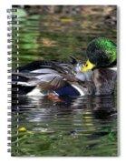 Mallard Preening Hdr Spiral Notebook