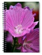 Mallow Spiral Notebook