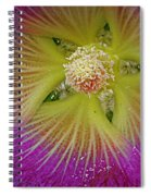 Malva Middle Spiral Notebook