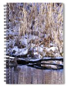 Mama Duck On Patrol Spiral Notebook