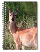 Mama To Be Spiral Notebook