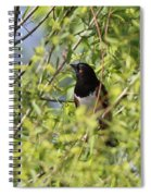 Man Of The Willows Spiral Notebook