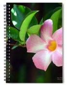 Mandevilla Pink Spiral Notebook