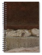 Manhole Cover And Rock Spiral Notebook