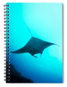 Manta Ray Spiral Notebook