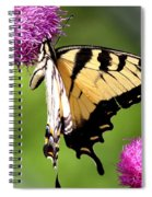 Many Colors Spiral Notebook