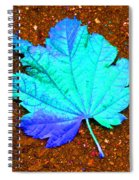 Maple Leaf On Pavement Spiral Notebook