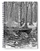 Maple Syrup, 1877 Spiral Notebook