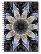 Marbled Mandala - Abstract Art Spiral Notebook