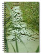 Marsh-field Ma Spiral Notebook