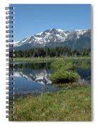 marsh Flowing to Lake Tahoe Spiral Notebook