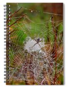 Marsh Spider Web Spiral Notebook