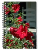 Martha's Vineyard Red Hibiscus And Porch Spiral Notebook