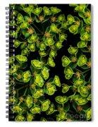 Martian Plants Against Black Spiral Notebook