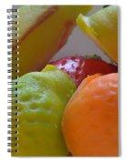 Marzipan 2 Spiral Notebook