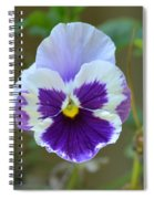 Masked In Purple Spiral Notebook