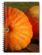 Mass Pumpkins Spiral Notebook