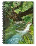 Maya Ubud Tree Bali Indonesia Spiral Notebook