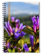 Meadow And Mountains Spiral Notebook