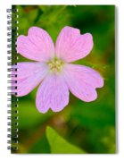 Meadow Checker Mallow Spiral Notebook