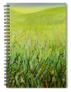 Meadow Four Spiral Notebook