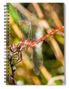 Meadowhawk Spiral Notebook