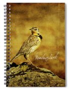 Meadowlark Spiral Notebook