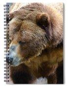 Meandering Along Spiral Notebook