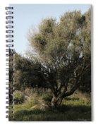 Mediterranean Wood Wiew Spiral Notebook