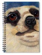Meerkat Eyes Spiral Notebook