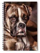 Meet Rocky Spiral Notebook