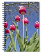 Meeting The Tree Spiral Notebook