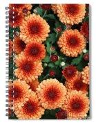 Merry Marigolds Spiral Notebook
