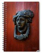 Mexican Door Decor 2  Spiral Notebook