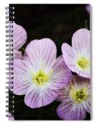 Mexican Primrose  Spiral Notebook