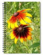 Mexican Sunflowers 2 Spiral Notebook