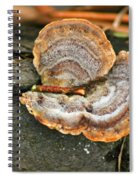 Michigan Golden Fungus Spiral Notebook