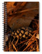 Michigan Golden Sunset Pine Cone Spiral Notebook