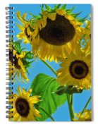 Mid Summer Dreams Spiral Notebook