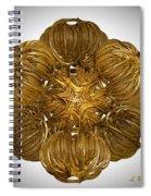 Midas Touch Spiral Notebook